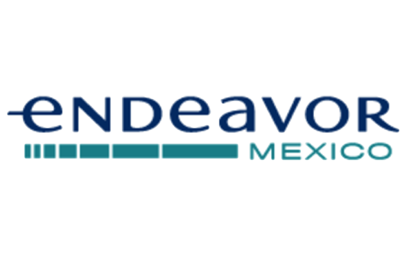 logo-endeavour-ignius-gustavo-hernandez-moreno